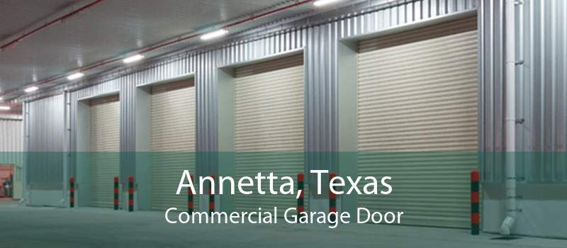 Annetta, Texas Commercial Garage Door
