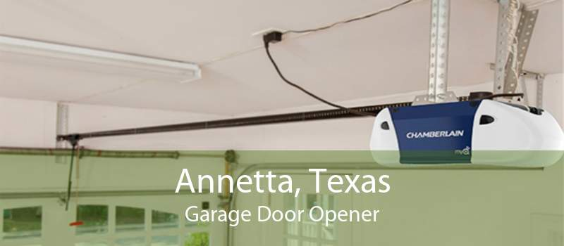 Annetta, Texas Garage Door Opener