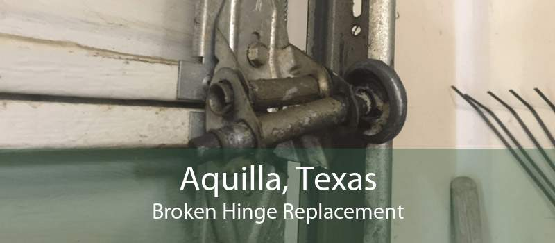 Aquilla, Texas Broken Hinge Replacement