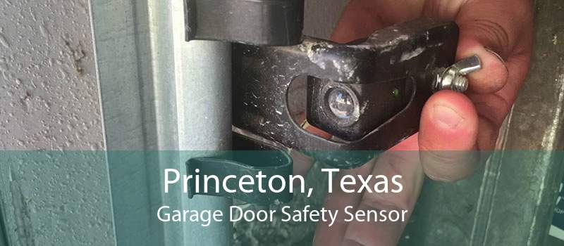 Princeton, Texas Garage Door Safety Sensor
