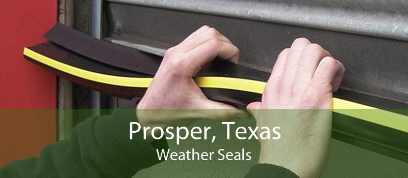 Prosper, Texas Weather Seals