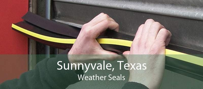 Sunnyvale, Texas Weather Seals