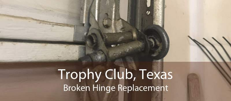 Trophy Club, Texas Broken Hinge Replacement
