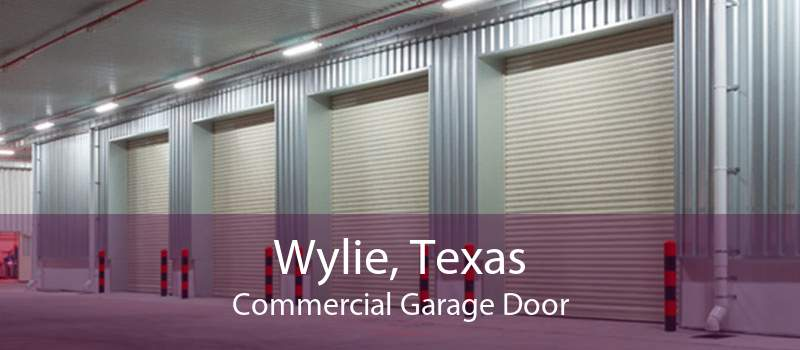 Wylie, Texas Commercial Garage Door